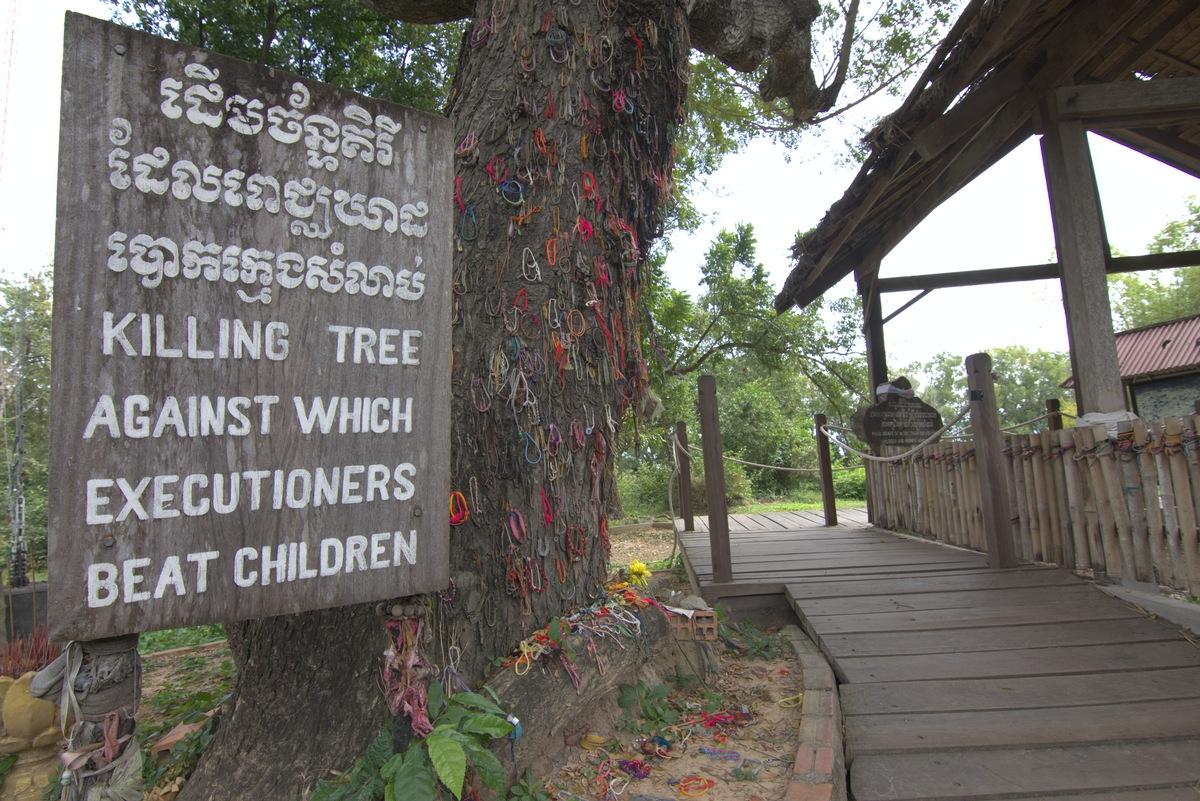 Tree used to kill enfants