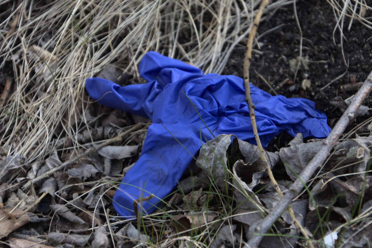 Protective rubber or plastic glove in the grass